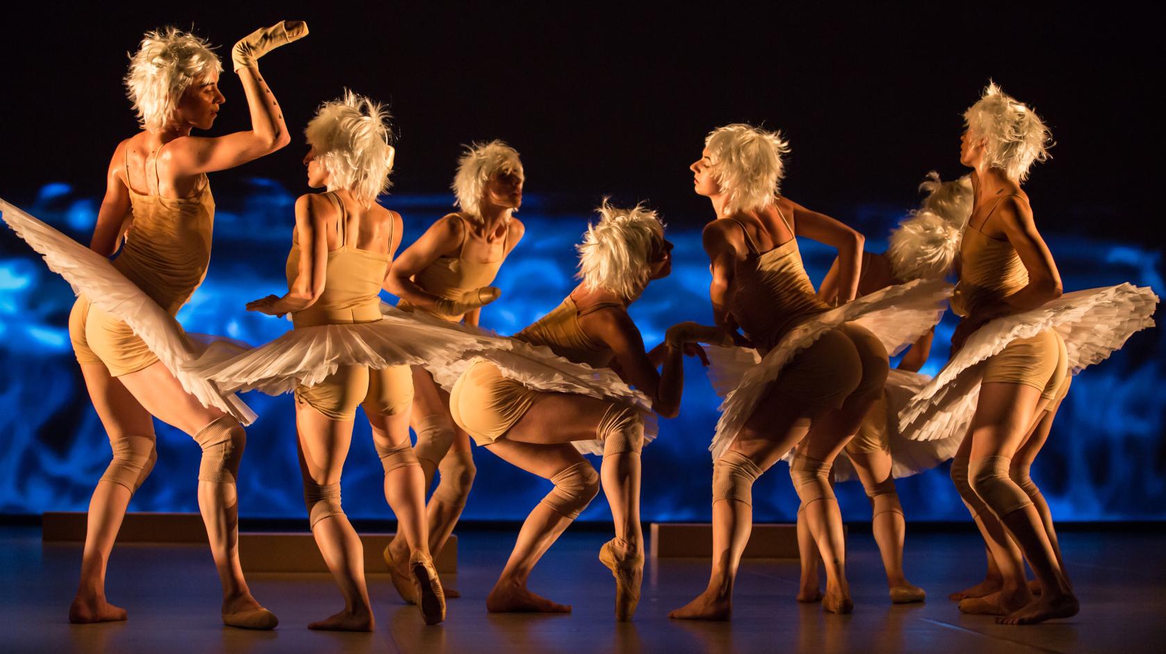"""Gauthier Dance//Dance Company Theaterhaus Stuttgart   Zwei Golden Prague Awards für """"The Dying Swans Project""""  """